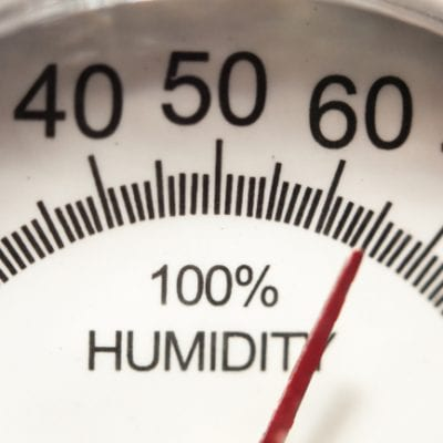 6 Businesses that Can Benefit from Using a Humidity Monitor